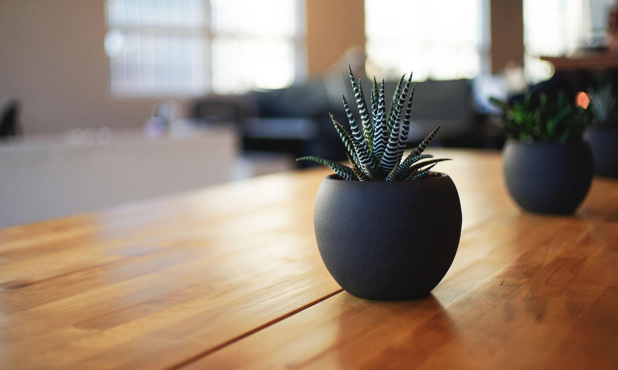 筑西市で注文住宅でマイホームつくりたい